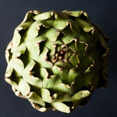 How to eat an artichoke Recipe